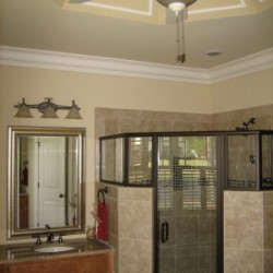 master bathroom, custom shower, trey ceiling
